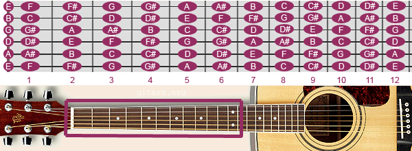 Guitar Notes on Fretboard